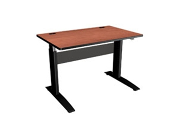 Electric Sit to Stand Height Adjustable Desk